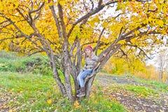Nettes Mädchen im Herbst sitzen auf Baum Lizenzfreies Stockbild