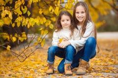 Nettes Mädchen mit ihrer jüngeren Schwester im Herbst Park Lizenzfreie Stockbilder