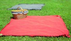 Nettes neues Lebensmittel und Korb auf dem Gras Lizenzfreie Stockfotografie