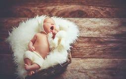 Nettes neugeborenes Baby im Bären, den Hut im Korb mit Spielzeugteddybären schläft, ist lizenzfreies stockbild