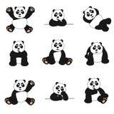 Nettes Panda-Set Lizenzfreie Stockfotografie