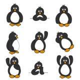 Nettes Pinguin-Set Stockfotos