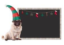 Nettes Pughündchen, das einen Elfenhut, sitzend nahe bei leerem Tafelzeichen mit Weihnachtsdekoration, auf weißem BAC trägt Stockfotos