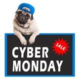 Nettes Pughündchen, das mit den Tatzen auf Zeichen mit Text Cyber Montag, auf weißem Hintergrund hängt Lizenzfreie Stockbilder