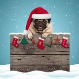 Nettes Pughündchen, das Sankt-Hut hängt mit den Tatzen auf verwittertem Holzschild mit Weihnachtsdekoration trägt stockbilder