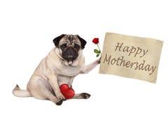 Nettes Pughündchen, das Weinlesesitzt Papierzeichen mit Text glücklichem mothersday nach unten, halten, lokalisiert auf weißem Hi lizenzfreie stockfotos