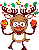 Nettes Ren, das Weihnachtsflitter und -verzierungen hält Stockbild