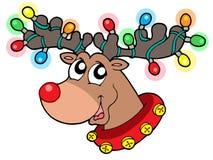 Nettes Ren in den Weihnachtsleuchten Lizenzfreies Stockbild