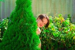 Nettes schönes Mädchen schaut heraus von hinten grünen Baum Stockfotos