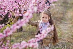 Nettes schönes stilvolles gekleidetes blondes Mädchen, das auf einem Feld des jungen Pfirsichbaums des Frühlinges mit rosa Blumen Lizenzfreie Stockbilder