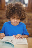 Nettes Schülerlesebuch in der Bibliothek Stockfotos