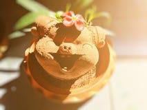 Nettes Schwein formte den Blumentopf, der mit Innenausstattung verziert wurde lizenzfreie stockbilder