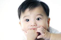Nettes Säuglingsschätzchen, das seine Hand saugt Lizenzfreies Stockbild