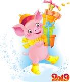 Nettes Symbol des chinesischen Horoskops - gelbes erdiges Schwein mit Geschenkboxen lizenzfreie stockfotografie