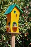 Nettes Vogelhaus nach Maß gemalt in Gelbem und in Grünem vor einer Hecke auf einem Pfosten gemacht vom Holz mit mehrfachen Eingän stockfotos