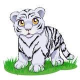 Nettes weißes Tigerjunges mit hellen gelben Augen vektor abbildung