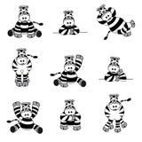 Nettes Zebra-Set Stockfoto
