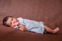 Nettes zwei-Wochen-altes neugeborenes Baby, das sich hinlegt Stockfotografie