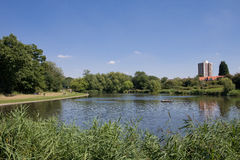 netteswell池塘 库存图片