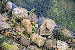 Netting covering a garden pond. Held in place by natural rocks and stones over a black plastic liner in a landscaping concept Stock Photos