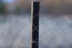 Netting fence close up Royalty Free Stock Photography