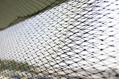 Netting for fish trap. Royalty Free Stock Images