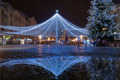 Netting with lights. Christmas decoration. Night scene Royalty Free Stock Photography