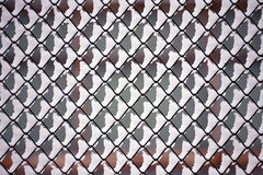 Netting pattern Royalty Free Stock Images