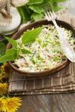 Nettle σαλάτα με το λάχανο στοκ φωτογραφίες
