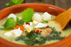Nettle σούπα κρέμας φύλλων Στοκ εικόνα με δικαίωμα ελεύθερης χρήσης