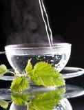 nettle τσάι στοκ φωτογραφίες