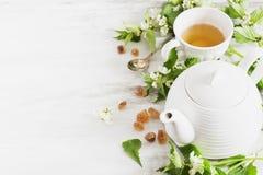 Nettle τσάι στοκ φωτογραφία