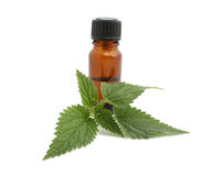Nettle. With bottle isolated on white stock photography