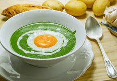Nettle cream soup. Stock Photos