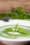 Nettle cream soup with sour cream Royalty Free Stock Photography