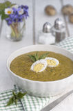 Nettle cream soup Stock Photos