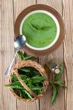 Nettle cream soup Stock Image
