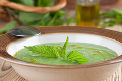 Nettle cream soup Stock Image