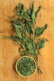 Nettle. Dried herbs. Herbal medicine, phytotherapy medicinal. Nettle. Dried herbs for use in alternative medicine, spa, herbal cosmetics, herbal medicine stock photo