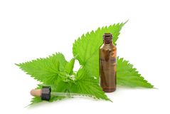 Nettle with dispenser stock images