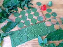 Nettle green pasta. Cooking nettle green pasta with wild plants royalty free stock image