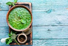 Nettle leaf soup. Nettle soup in bowl on wooden surface.Green nettle soup royalty free stock images