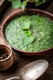 Nettle leaf soup. Nettle cream soup on wooden background.Soup with fresh nettles royalty free stock photography