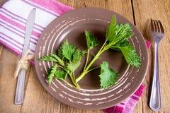 Nettle on plate Stock Photos