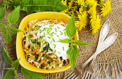 Nettle salad with cabbage royalty free stock image