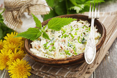 Nettle salad with cabbage stock photos