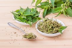 Nettle seeds. Bowls with fresh Nettle seeds and nettle leaves stock image