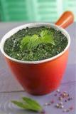 Nettle soup Stock Photos