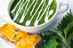 Nettle Soup Royalty Free Stock Image