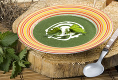 Nettle soup. Nettles soup with sour cream Stock Photos